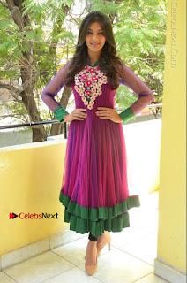 Actress Pooja Jhaveri Latest Stills in Purple Salwar Kameezt at Dwaraka Success Meet  0251.JPG