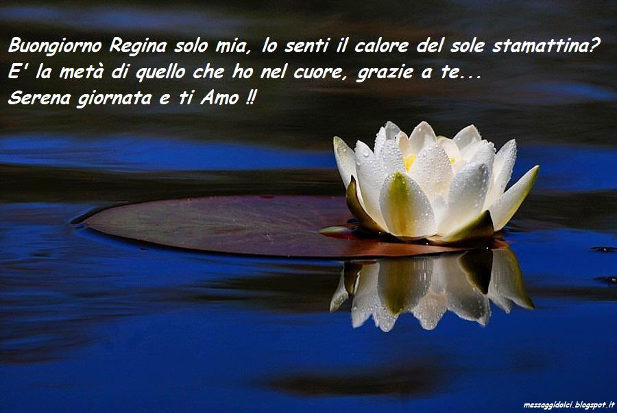 Buongiorno immagini belle messaggi dolci for Foto belle di buongiorno