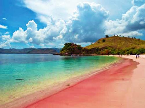 pantai-pink-panorama