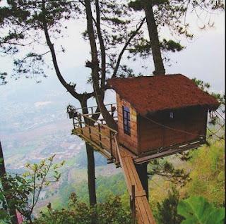 Omah kayu Paralayang