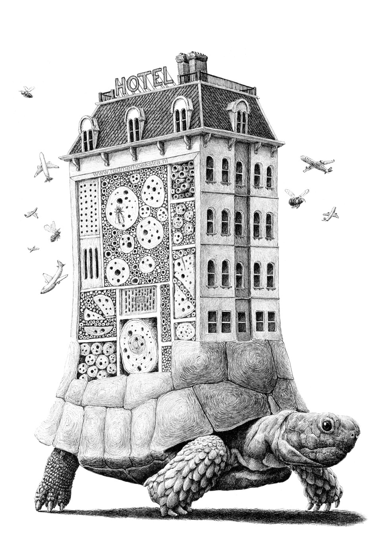 02-Tortoise-Hotel-Redmer-Hoekstra-Surreal-Animal-Drawings-Pen-on-Paper-www-designstack-co