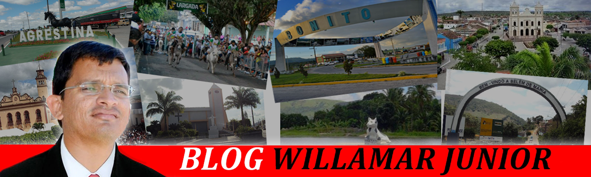 BLOG  WILLAMAR JR