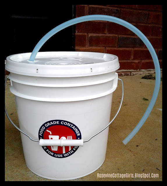 Maple tap collection bucket