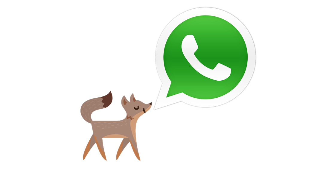 WhatsApp The Best Instant Messaging App
