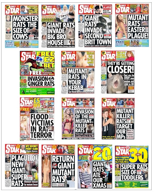 daily star rats