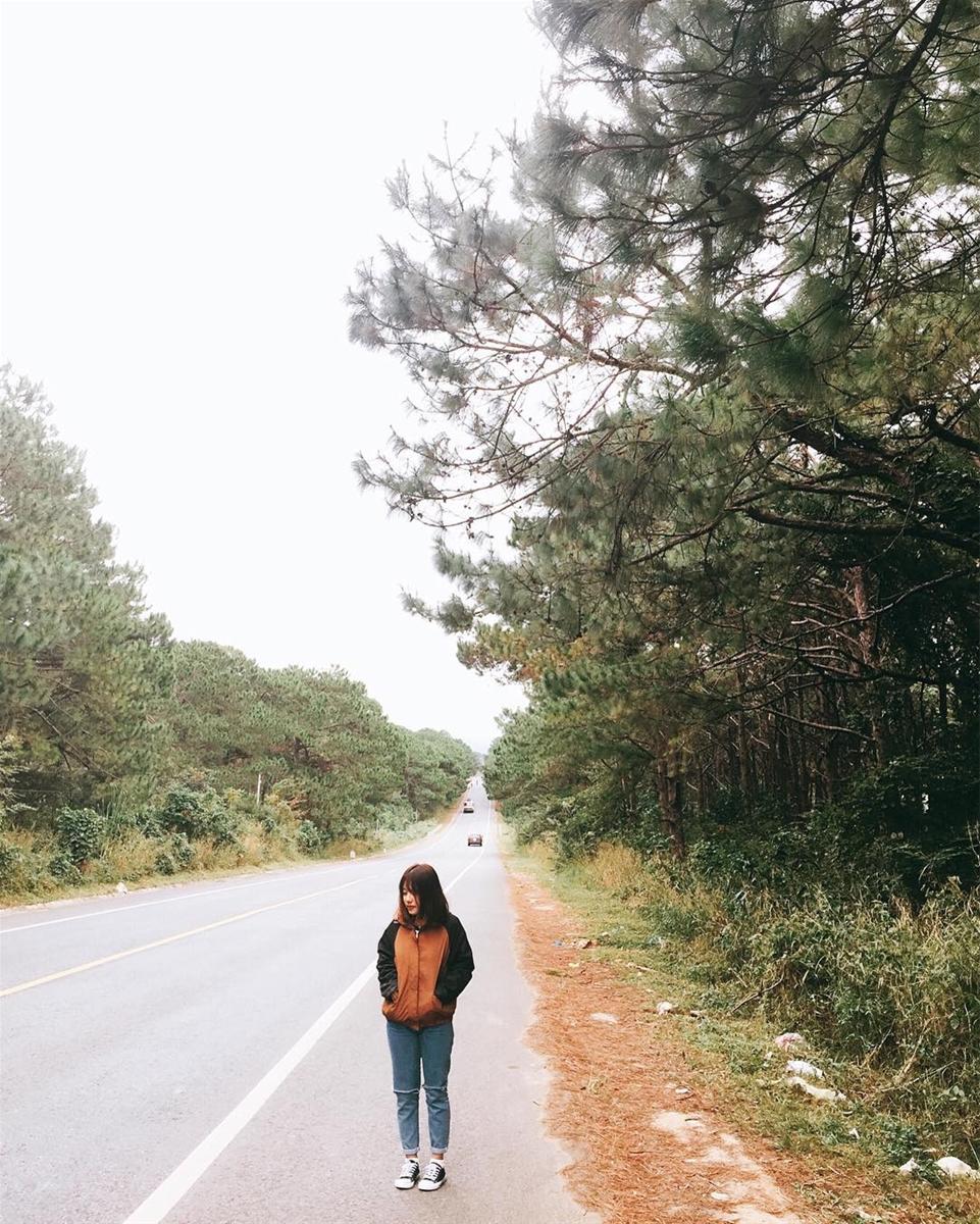 Kinh nghiệm du lịch Pleiku – Gia Lai: 99 điều cần bỏ túi chi tiết từ A-Z