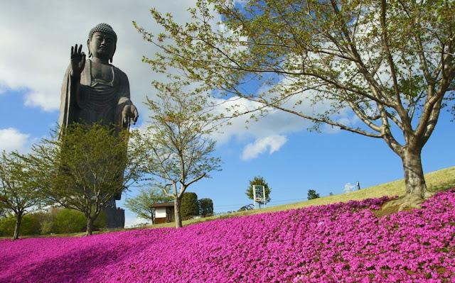 Đạo Phật Nguyên Thủy - Kinh Tiểu Bộ - Trưởng lão ni Rohinì