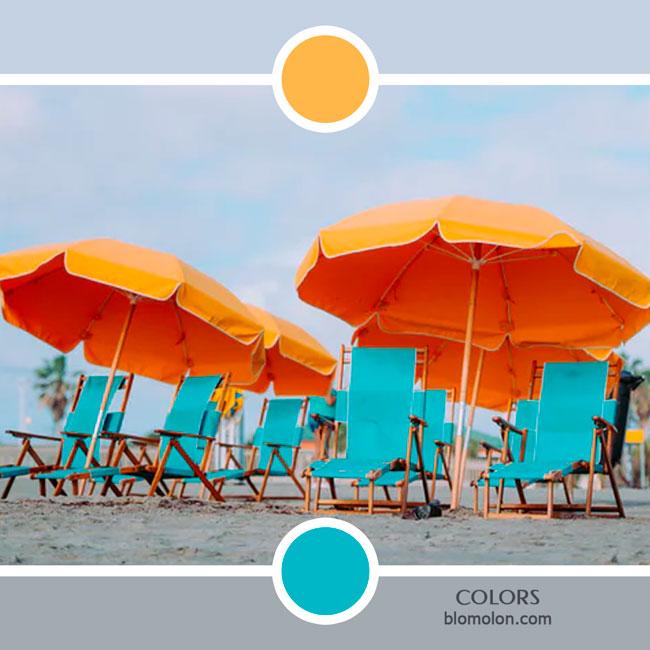 variedad_en_color_color_69