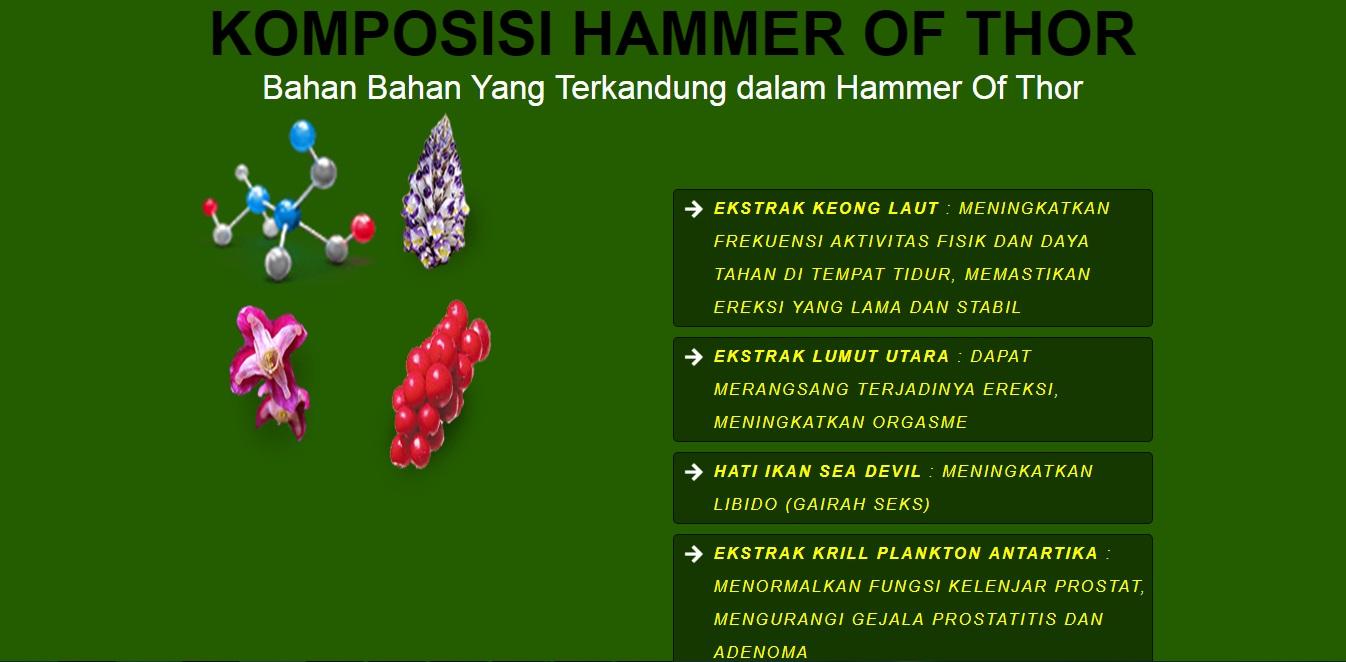 hammer of thor quot pembesar alat vital pria