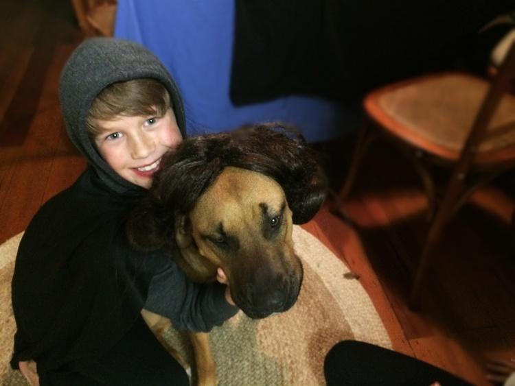 Princess Leia-dog