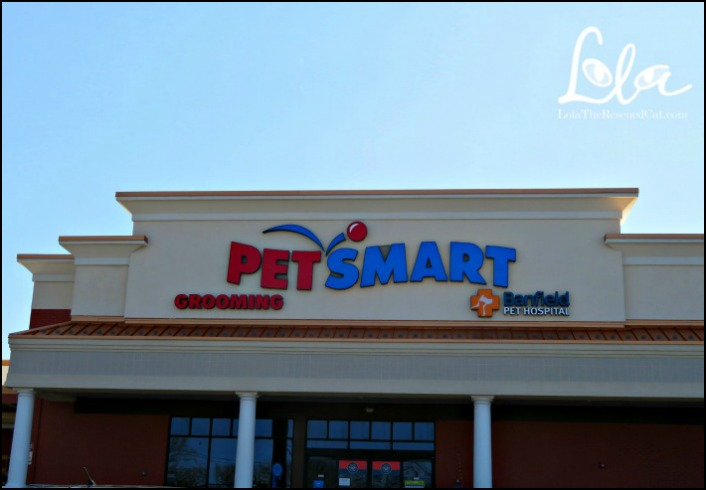 PetSmart|Wellness Grain Free