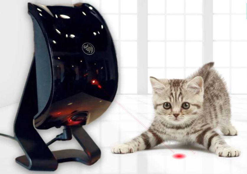 Felik | AI Powered Cool Pet Companion Entertains Your Pets