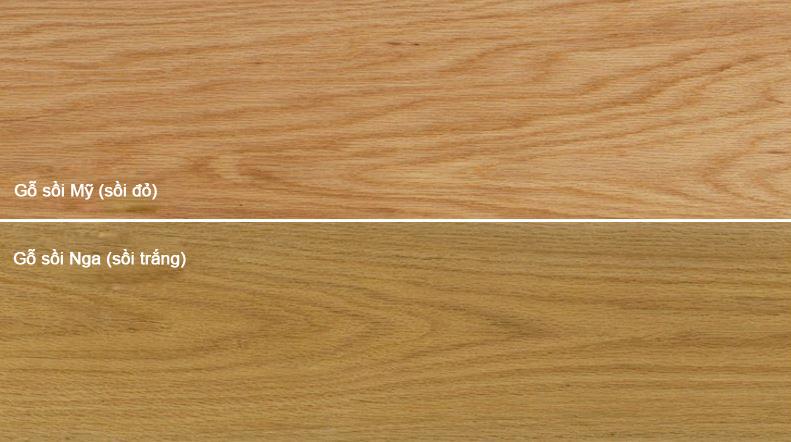Gỗ sồi trắng ( sồi Nga) và gỗ sồi đỏ ( sồi Mỹ)