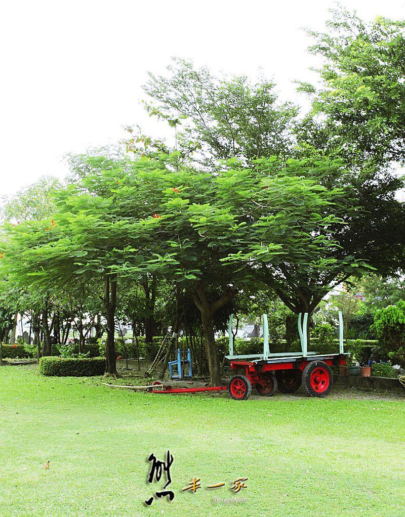 高雄阿蓮親子景點|農春鎮生態教育農場