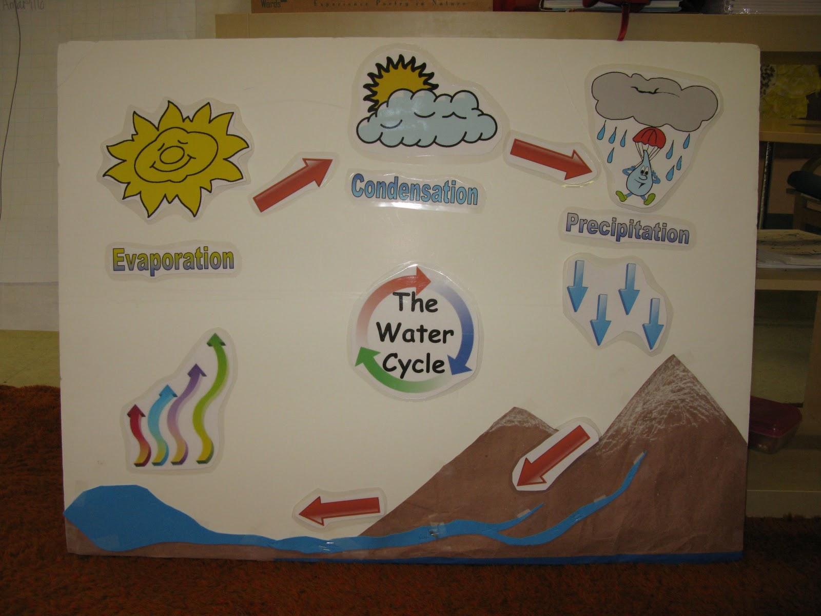 Kids Science Amp Nature