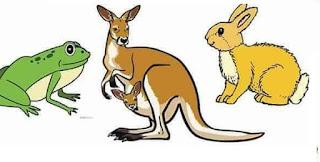 بحث حول أنماط - طرق - تنقل الحيوانات