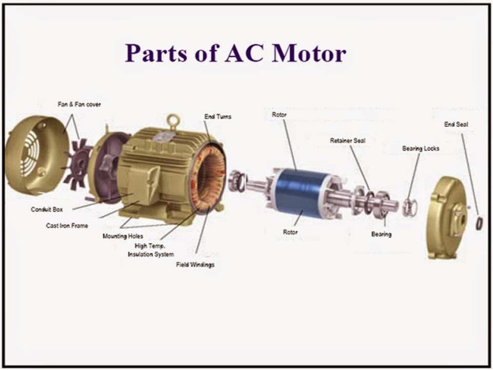 Three phase and single phase induction motors electrical for Three phase induction motor