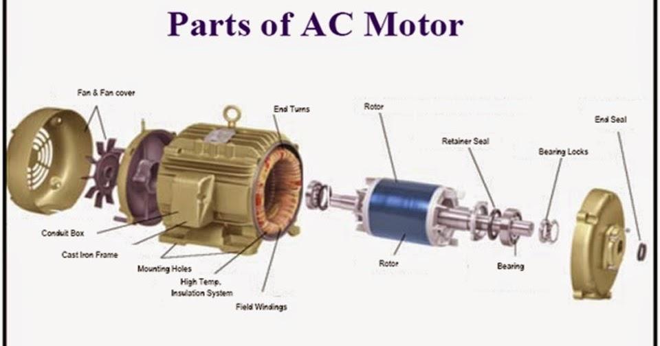 Three Phase And Single Phase Induction Motors