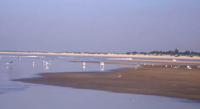 Sonadia Island, sea beach image