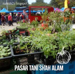 Ada apa dengan pasar tani Shah Alam