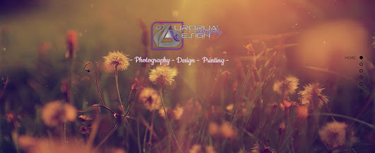 Aurorua Design Photography Website