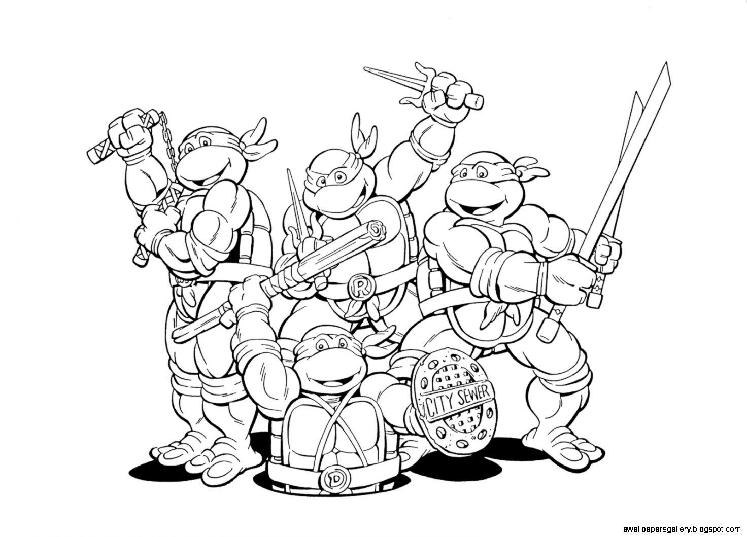 Cool Turtle Drawings Wallpapers Gallery