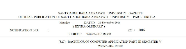 SGBAU BCA Part 3 Winter 2016 Result