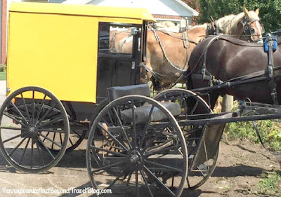Amish Horse and Buggy Rides in Lancaster Pennsylvania