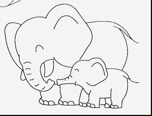 Amazing Cute Baby Elephant Coloring Pages With Baby Animal Coloring Pages  And Baby Jungle Animal Coloring