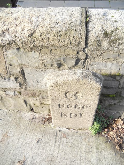 Walk the River Dodder in Dublin - Engraved Stones