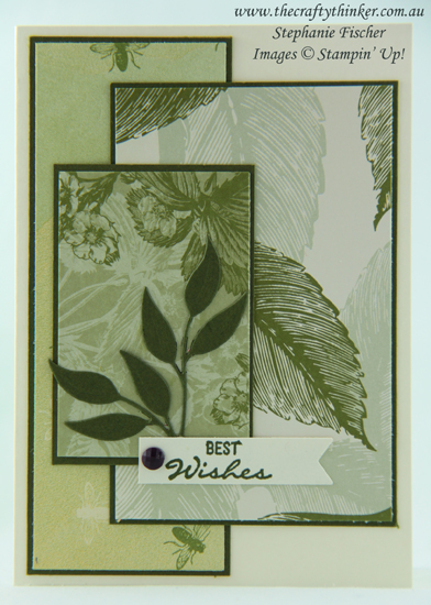 #thecraftythinker #Masculine Card #stampinup  #cardmaking ,Simple Card, Tea Room suite, Foliage Frame dies, Stampin' Up Australia Demonstrator, Stephanie Fischer, Sydney NSW