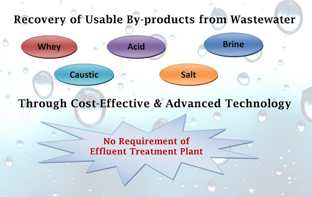 caustic,acid,brine,whey,salt recovery system