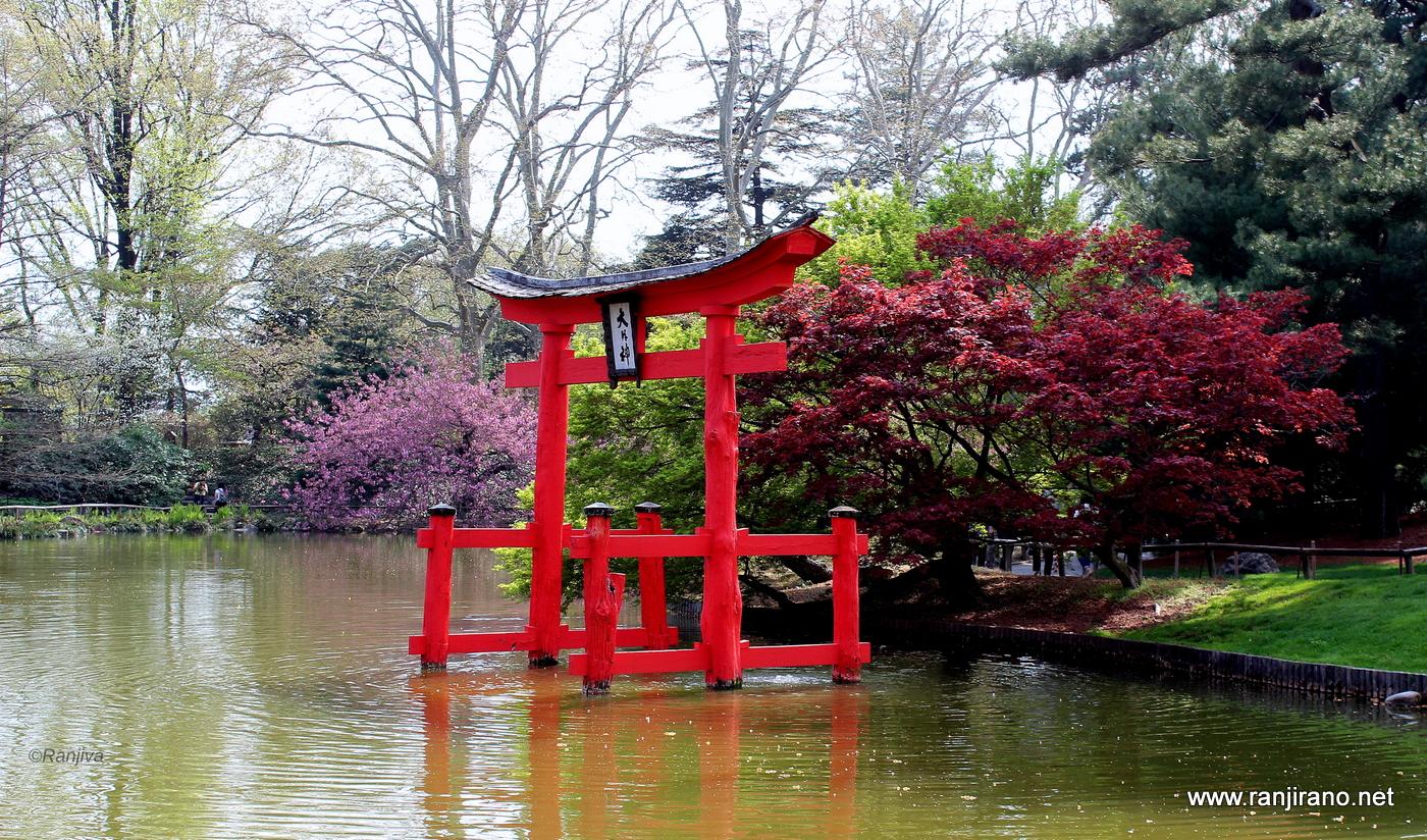 Un Jardin Japonais A New York Brooklyn Botanic Garden