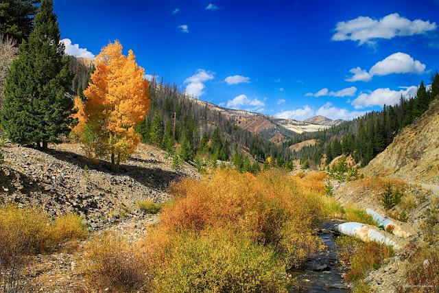 Salmon River Idaho autumn geology field trip travel copyright RocDocTravel.com
