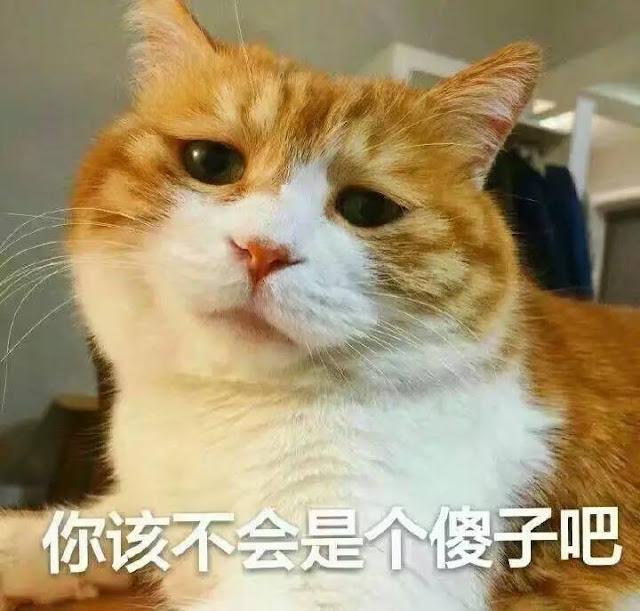 Zhang Binbin BTS Liehuo Ruge