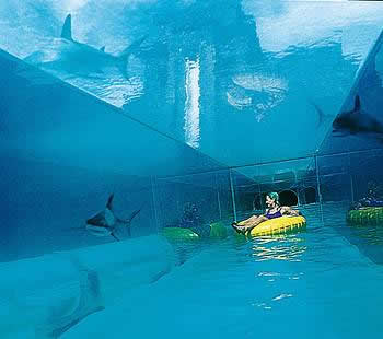 Atlantis Bahamas: Sightseeing In The Bahamas   World Traveling