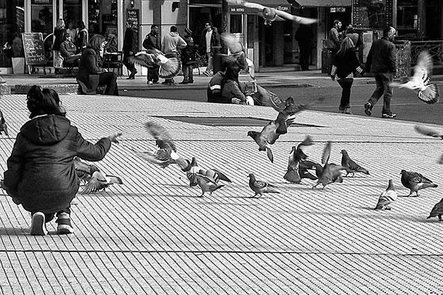 Blanco y  negro.Joven alimentando palomas en plaza