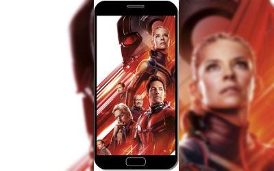Ant-Man et la Guêpe - Fond d'écran en QHD pour Mobile