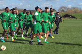 Russia 2018: Nigeria, Iceland venue ready for use