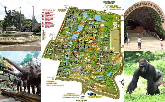 Peta Lokasi Kebun Binatang Ragunan