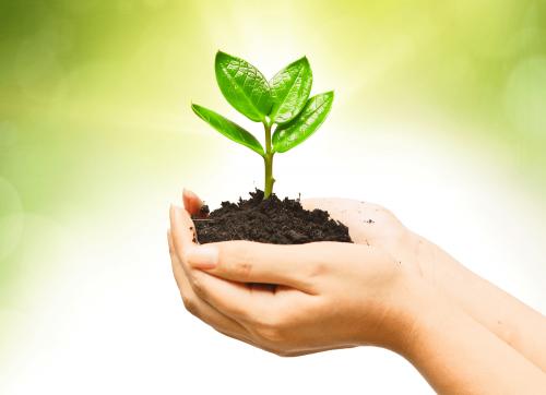 7 Langkah Membuat Bisnis Kecil Terlihat Besar Dan Menarik Hati Konsumen