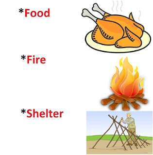 This ia a survival tips image