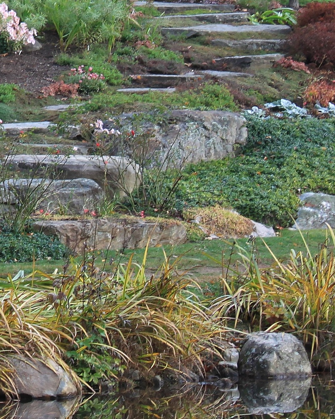 Awesome Backyard Rock Garden