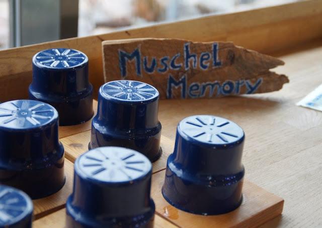 Mehr übers Meer lernen: Das Ostsee Info-Center in Eckernförde (+ Verlosung). Das Muschel-Memory macht der ganzen Familie Spaß!