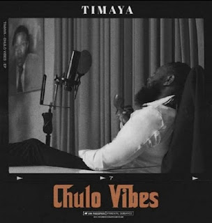 Download Stoopid by Timaya, audio mp3.