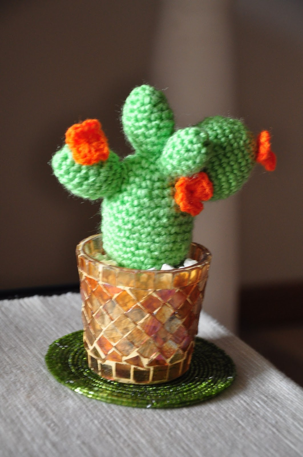 Cactus   Chica outlet   1600x1062