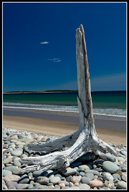 Nova Scotia; Hirtle's Beach; Beach; Atlantic; Shore; Maritimes; Driftwood
