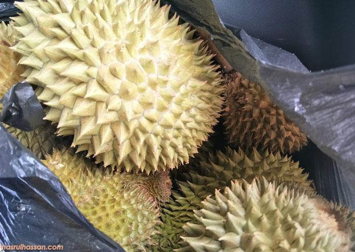Cara Pilih Buah Durian Lihat Pada Duri