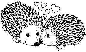 Hedgehog coloring page 6