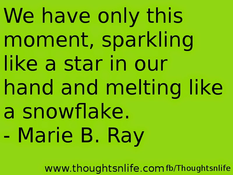 Thoughtsnlife.com: We have only this moment, sparkling like a star in our hand and melting like a snowflake. - Marie B. Ray